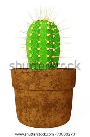 green cactus isolated on a white background.