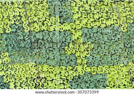 Green camouflage texture. Camo net background - stock photo