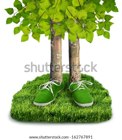 Green carbon footprint environmental concept, trees with shoes isolated - stock photo