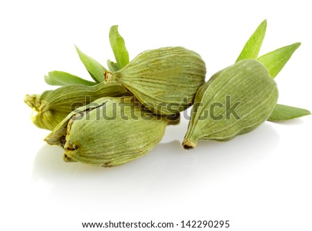 Green cardamom pods on white background - stock photo
