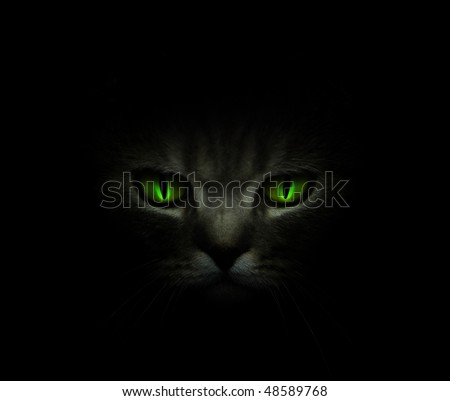 Green cat's eyes glowing in the dark - stock photo