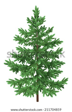 Green Christmas spruce fir tree isolated on white background. - stock photo
