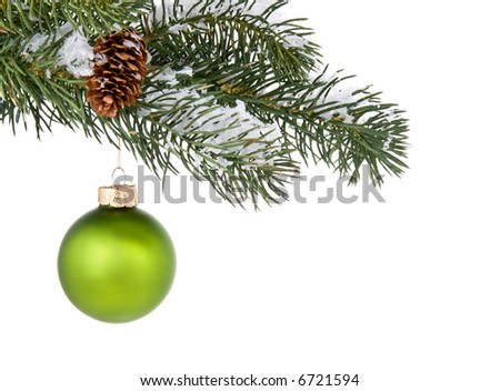 Green Christmas tree ornament hangs from a pine tree branch against white background