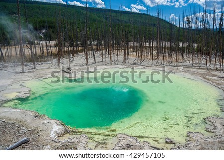 Green Cistern Spring In The Norris Geyser Basin at Yellowstone National Park, Wyoming, USA - stock photo
