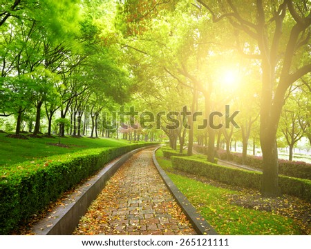 Green city park - stock photo