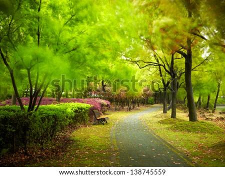 Green city park. Shanghai, china - stock photo