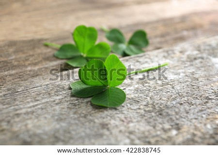 Green clover leaves on wooden background, closeup - stock photo