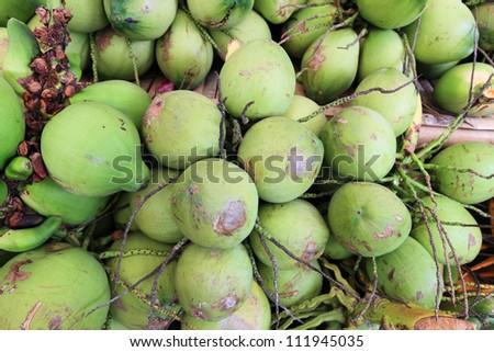 green coconut - stock photo