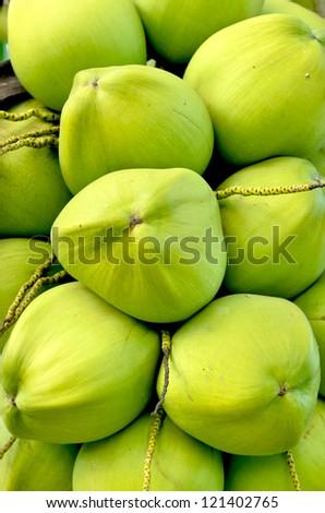 green coconut at tree - stock photo