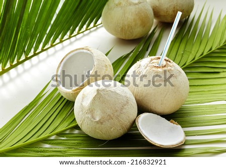 Green coconut on white Leaves  background - stock photo