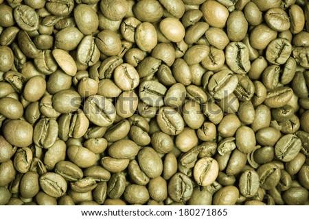 Green coffee bean background. - stock photo