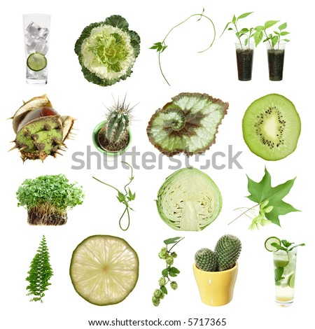 green collection (green objects isolated on white) - stock photo