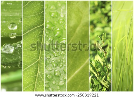 Green color samples collage - stock photo