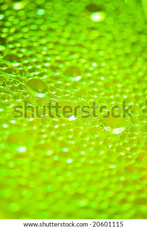 green color waterdrops - stock photo