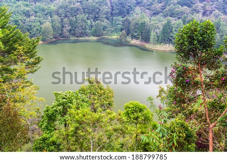 Green colored lake surrounded by a forest in Arvi Park near Medellin, Colombia - stock photo