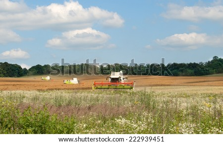 green combines harvesting wheat  - stock photo