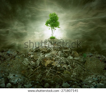 Green concept as a leaf tree on top of mountain heap of garbage with roots as an environment or conservation icon for waste management or new healthy beginning. - stock photo