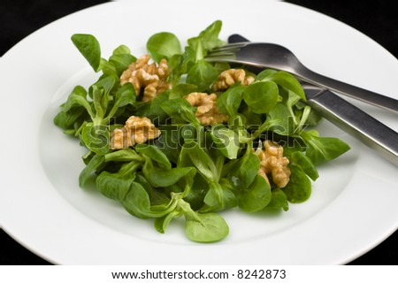Green cornsalad with walnut in a white plate - stock photo
