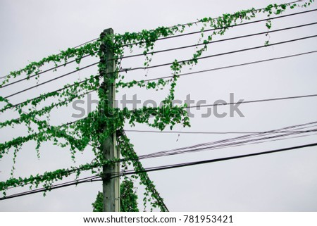 power line communication a green computing Line communication (plc) for smart meters using fog computing based data   in many countries to provide cleaner and greener energy to the consumers.