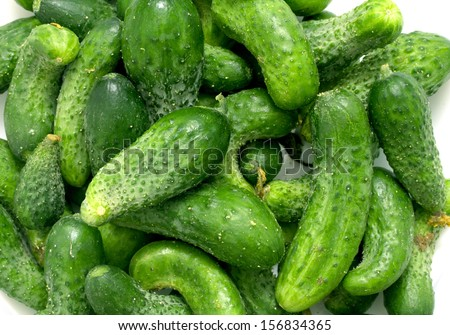green cucumber on white background