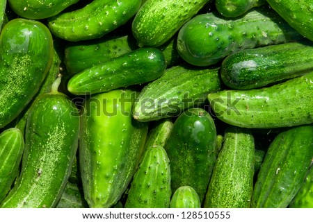 green cucumbers, background