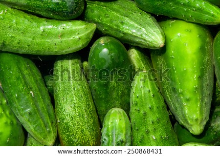 green cucumbers, background - stock photo