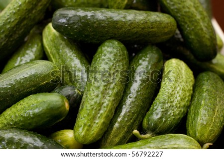Green cucumbers background