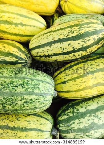 Green Delicata squash at the autumn marketplace. - stock photo