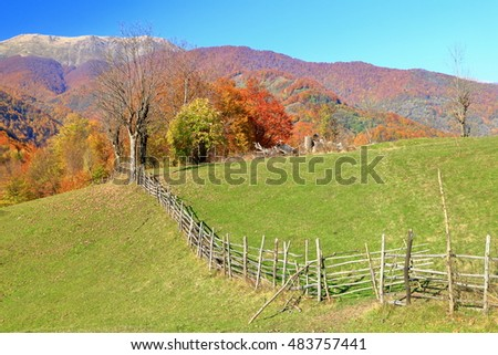 Green divided by wooden fence in sunny autumn day