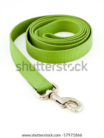 Green Dog Leash Isolated on White - stock photo