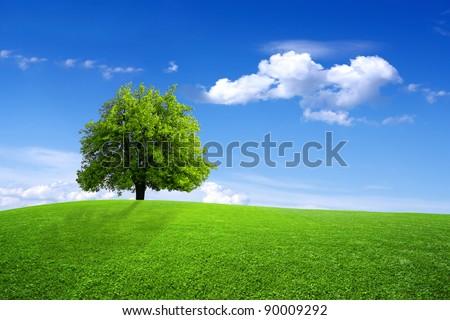 Green dreams - stock photo