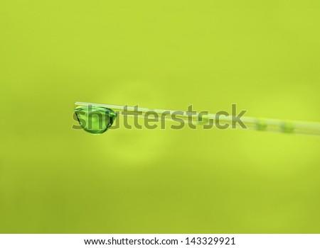 Green drop - stock photo