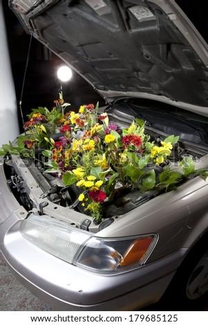 Green Eco Car - stock photo