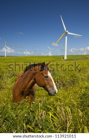 Green ecology, Alternative green energy wind turbines and horse - stock photo