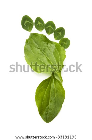 green ecology symbol foot print - stock photo