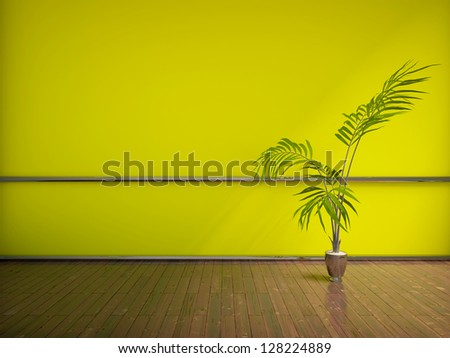 green empty interior with a palm - stock photo