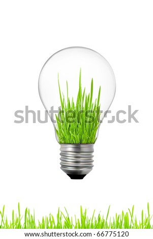 green energy concept: light bulb with grass inside - stock photo