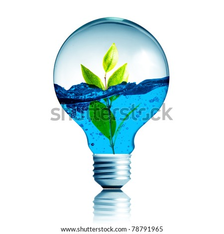 green energy concept, plant growing inside the light bulb fill with blue water - stock photo