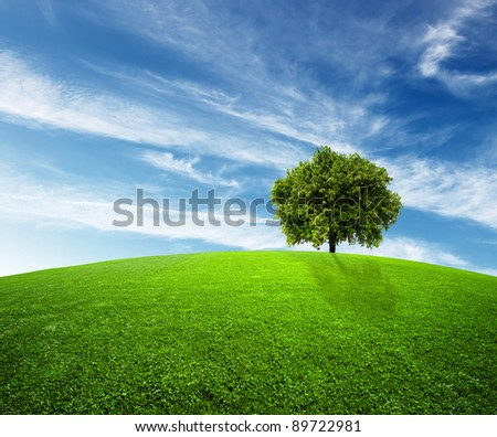 Green environment - stock photo