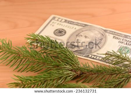 green eve and twenty dollars - stock photo