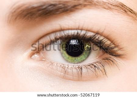 green eye - stock photo