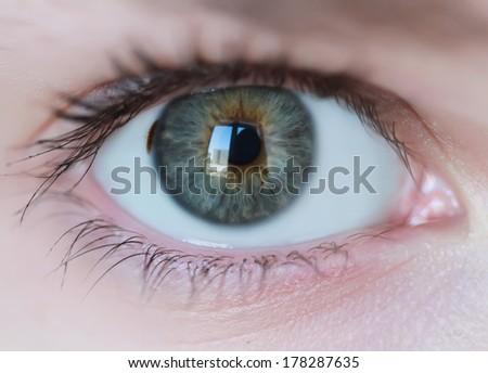 Green eye in macro - stock photo