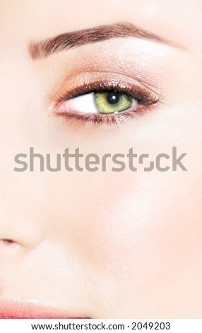 green eye with dramatic brown and pink make-up - stock photo