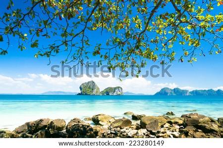 Green Fantasy Exotic Beach  - stock photo