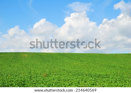 Green farm field landscape and cloudy sky - stock photo