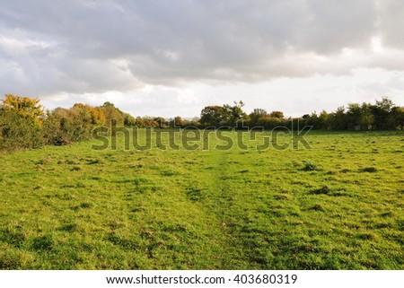 Green Farmland Field with an Overcast Sky Above - stock photo