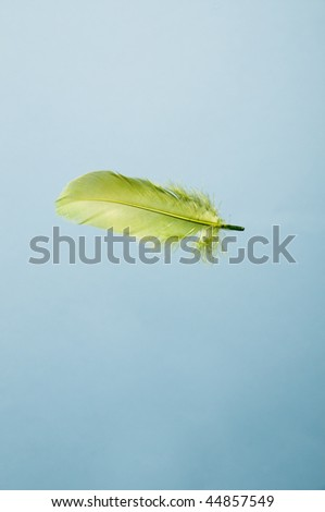 Green feather falling in the blue sky - stock photo
