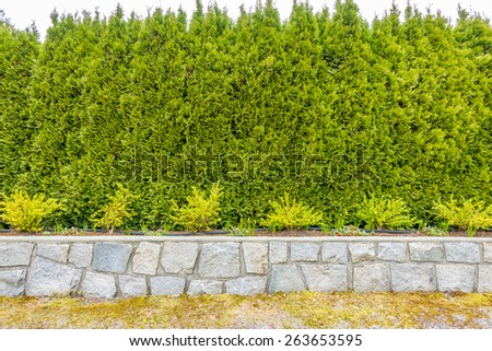 green fence - stock photo