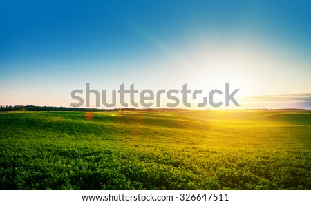 Green Field and Beautiful Sunset - stock photo