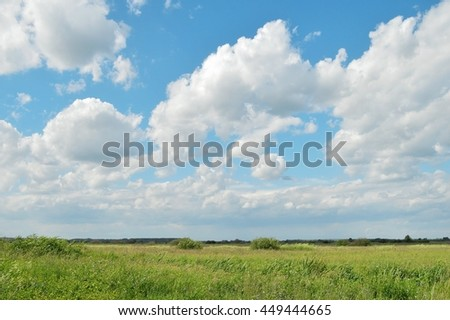 Green field and blue cloudy sky. Summer rural landscape - stock photo